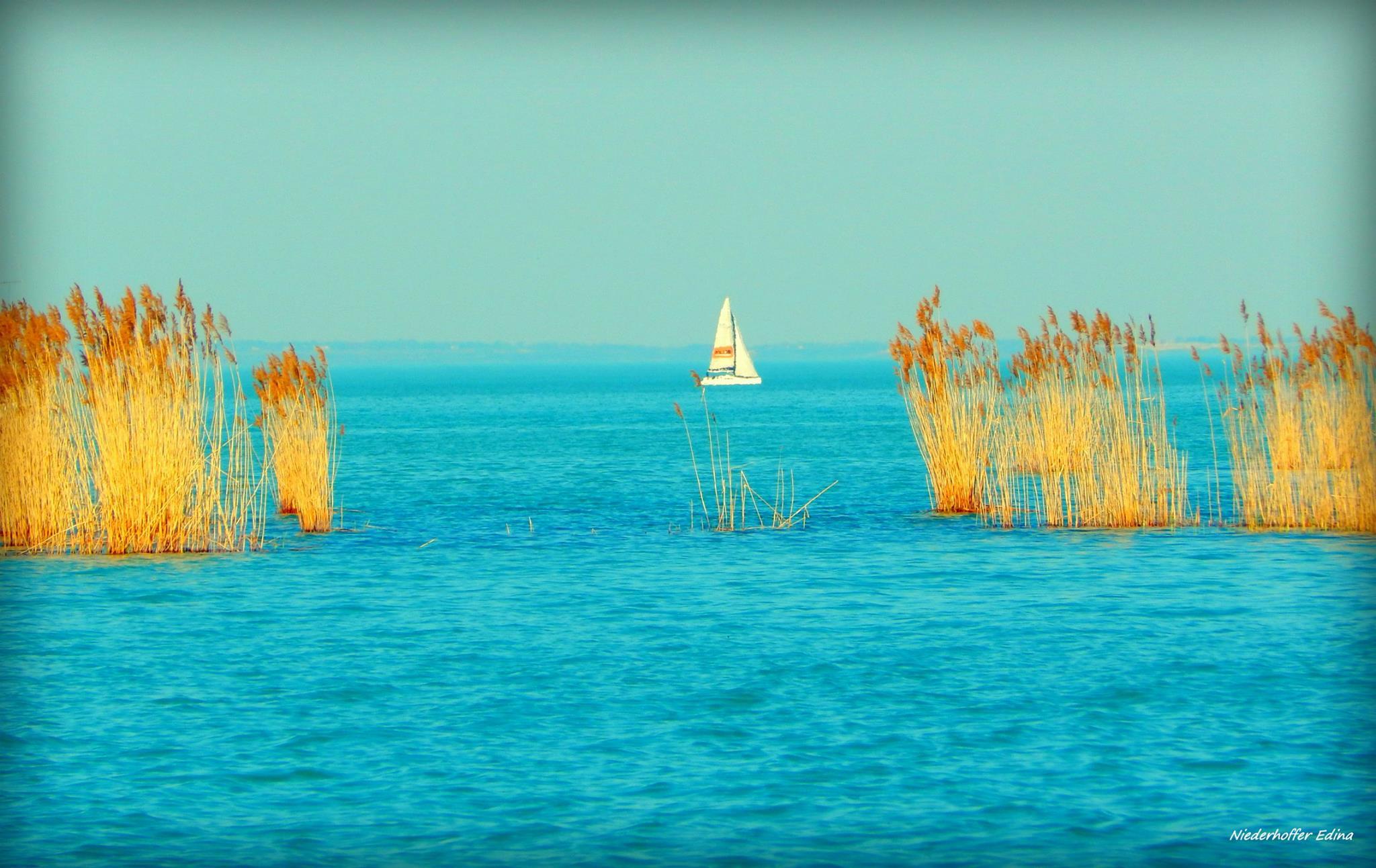 The serenity of Lake Balaton.