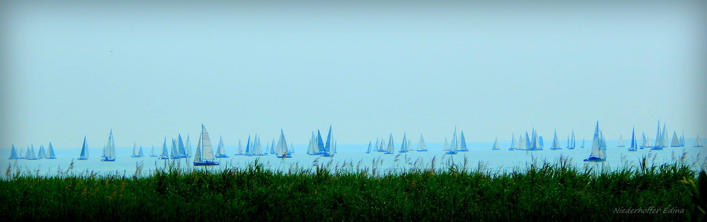 Kékszalag race photographed in 2016 from Balatonfüred.